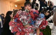 best-worst-met-gala-2017-outfits-main-1-480x320